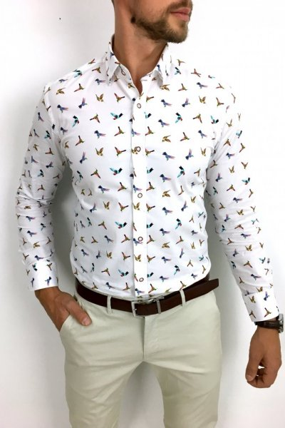 Koszula męska w koliberki
